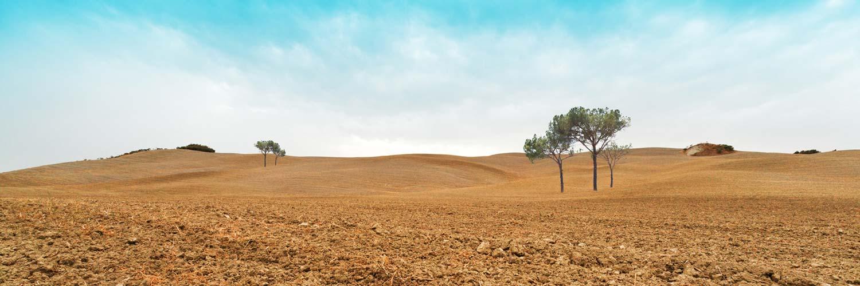 tuscany-plowed-field-1336001