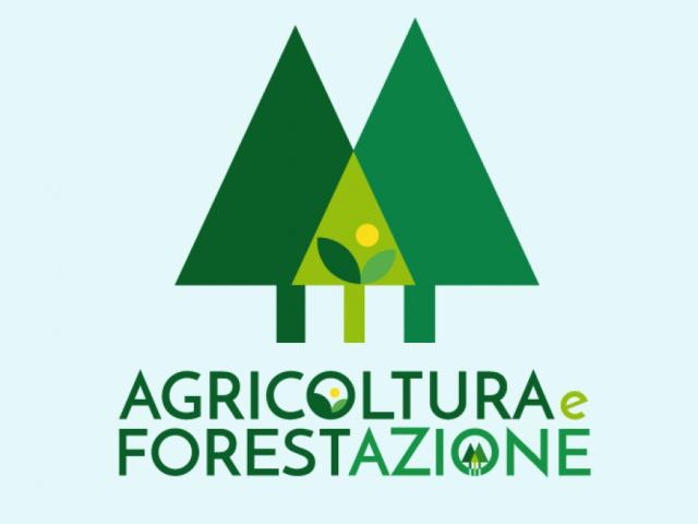 Agricoltura e forestazione
